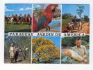 PARAGUAY JARDIN DE AMERICA - Paraguay