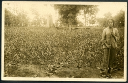 Arbeiterin Auf Einer Plantage, Ceylon, Ca. 1930 ? - Sri Lanka (Ceylon)