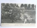 Guerre De 1914-15, Artillerie Francaise Avant Le Départ, Le Parc De 75 Avec Tous Les Chevaux - Oorlog 1914-18
