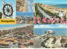 AN070 - Lotto Di 12 Cartoline Di Senigallia - Senigallia