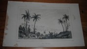 Brésil  - San Salvador - Gravure Originale - Tirage D´époque - 1837. - Stampe & Incisioni
