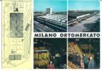 MILANO  - ORTOMERCATO - F/G - N/V - Milano (Milan)
