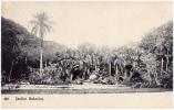 AK BRAZILIEN BRAZIL RIO DE JANEIROJARDIN BOTANICO Nr.328.  PAPELARIA ZENITH RUA DO OUVIDOR 127.  OLD POSTCARD 1910 - Rio De Janeiro