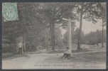 95 - Forêt De Carnelle - Le Poteau Saint-Quentin - France