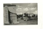 Arhus Universitetet - Danemark
