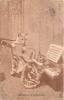 CHATS HUMANISES MUSIQUE D'ENSEMBLE  VOYAGEE EN 1904 - Chats