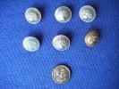 Lot De Boutons  (3 Matieres Differentes)daly Perchet Cumner Jones- - Buttons