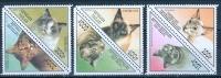 Togo 1999 Cats MNH** - Lot. 810 - Togo (1960-...)