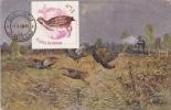 BIRDS, PASSEREAUX, 1968, CM. MAXI CARD, CARTES MAXIMUM, ROMANIA - Pájaros Cantores (Passeri)