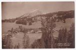 La Comballaz - Le Mont D'Or Et L'Hôtel De La Couronne - N'a Pas Circulé, Glacée - VD Vaud