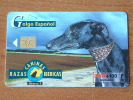 Razaz Caninas Ibericas / Galgo Espanol ( Telefonica Madrid ) ! - Cani