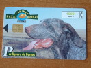 Razaz Caninas Ibericas / Perdiguero De Burgos ( Telefonica Madrid ) ! - Perros