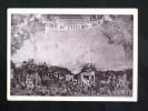 CAMPANIA -NAPOLI -PRESEPIO -F.G. LOTTO N°169 - Napoli