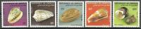 Djibouti 1983 ( Shells From The Rd Sea ) - Complete Set - MNH (**) - Yibuti (1977-...)