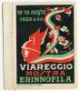 ERINNOFILO MOSTRA ERINNOFILIA VIAREGGIO ANNO 1929 - Cinderellas