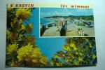 D 44 - Saint Brevin - Cité Des Mimosas - Saint-Brevin-les-Pins