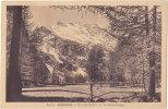 05. AILEFROIDE. Un Coin Du Parc Et Les Boeufs-Rouges. 8413-2 - Francia