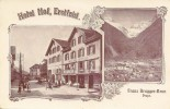 ERSTFELD > Hotel Hof Belebte Szene 1906 ++++ Lichtdruck Mehrbildkarte - UR Uri
