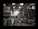 """16 - COGNAC - Etablissements HENNESSY - Une Des """"Batteries"""" De Foudres - 4 - Cognac"""