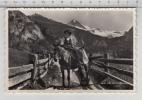 Au Val D'Hérens - Paysanne Sur Sa Mule - Paysans
