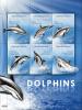 MICRONESIA  828  MINT NEVER HINGED MINI SHEET OF FISH-MARINE LIFE  #  M-548-2    (  0915   DOLPHINS - Vita Acquatica