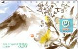 JAPAN JAPON MONTAGNE MOUNTAIN VOLCAN VOLCANO FUJIYAMA HOLOGRAMME HOLOGRAM  UT - Montagnes