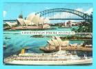 """Postcard - Ship, """"Canberra"""", Sydney      (V 9826) - Segelboote"""
