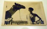 SOMALIA CAMMELIERE SOMALO 1928 - Gibuti