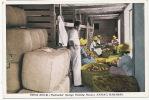 Nassau , Press Room , Psilinakis Sponge Packing House , Emballage Des Eponges, - Bahamas