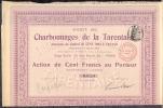 STE  Des CHARBONNAGES DE LA TARENTAISE   Action De 100F Au Porteur  Entierement Liberee Le 7 Fev 1911 A Paris - Shareholdings