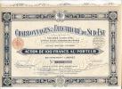 CHARBONNAGES Et ELECTRICITE Du SUD EST  Action   De 100F Au Porteur    Le 9 Nov 1933 - Actions & Titres