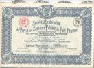 Ste D EXPLOITATION Du PORT Et Des SERVICES PUBLICS De PORT ETIENNE Action Privilegiee De 100F Au Porteur DAKAR  1925 - Aandelen