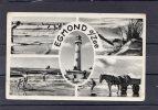 27251     Paesi  Bassi,  Egmond  A/Zee,  VGSB  1960 - Egmond Aan Zee