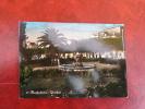 MANFREDONIA - Giardini  - FG - VIAGGIATA - - Manfredonia