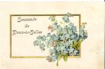 BELGIQUE:PONT-A-CELLES(Ha   Inaut.):Souvenir  De Pont-à-Celles:1900.Carte Relief.Myosotis.Cadre Doré. - Pont-à-Celles