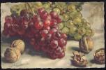CARLO  CHIOSTRI   Fruits     Signed  Old Postcard - Chiostri, Carlo