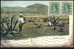 MEXICO     Hacienda De Maguey    1911.        Old Postcard - Mexique