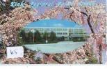 Télécarte Japon * POLICE * PHONECARD JAPAN (65) TELEFONKARTE * POLIZEI * POLITIE * - Police