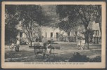 13 - MARSEILLE 6 - Cours De Jeunes Filles (Cours Bastide), 50, Rue De Lodi - Un Coin Du Jardin - Castellane, Prado, Menpenti, Rouet