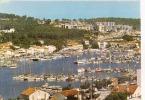 SAINT MANDRIER ,SON PORT,SES BATEAUX ,BEAU PLAN ,COLORISEE ,REF 26436 - Saint-Mandrier-sur-Mer