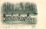 CHASSE à COURRE En Forêt De Fontainebleau La Meute - Hunting