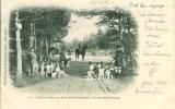 CHASSE à COURRE En Forêt De Fontainebleau En Attendant L'attaque - Hunting