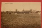CP WATERLOO - Panorama (1924) - Waterloo