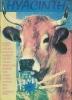 HYACINTH  N° 12 - 1993 - SMASHING PUMPKINS / DRIVE BLIND / BUFFALO TOM / BOO RADLEYS / FRED FRITH / 13TH HOLE........ - Musica