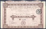 SOCIETE DES NAPHTES DU   RHARB CENTRAL  Action De 100f Au Porteur   Le 1er Mars 1922  19 Coupons - Shareholdings