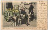 08153g CHARRETTE à CHIEN - Laitière Flamande - Roulers - 1902 - Carte Colorisée - Roeselare