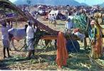 Village Scene, India, Elar 536 Unused - India