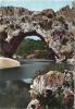 DEPT 07: Les Gorges De L'Ardeche - Le Pont D'arc Par Les Eaux Dans Le Rocher  070412 - France