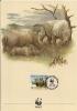 WWF - AÑO 1987 - TARJETA OFICIAL ILUSTRADA DE SWAZILANDIA, TEMA FAUNA, RINOCERONTE BLANCO, MATASELLOS DE PRIMER DIA. - Rinocerontes