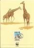 WWF - AÑO 1989 - TARJETA OFICIAL ILUSTRADA DE KENIA , TEMA FAUNA , JIRAFA RETICULADA, MATASELLOS DE PRIMER DIA. - Jirafas